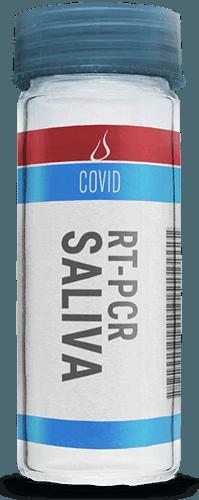 Teste Molecular RT-PCR Saliva